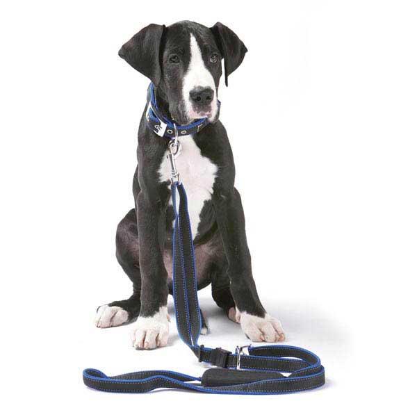 PatentoPet Vario Dog Leash - Black