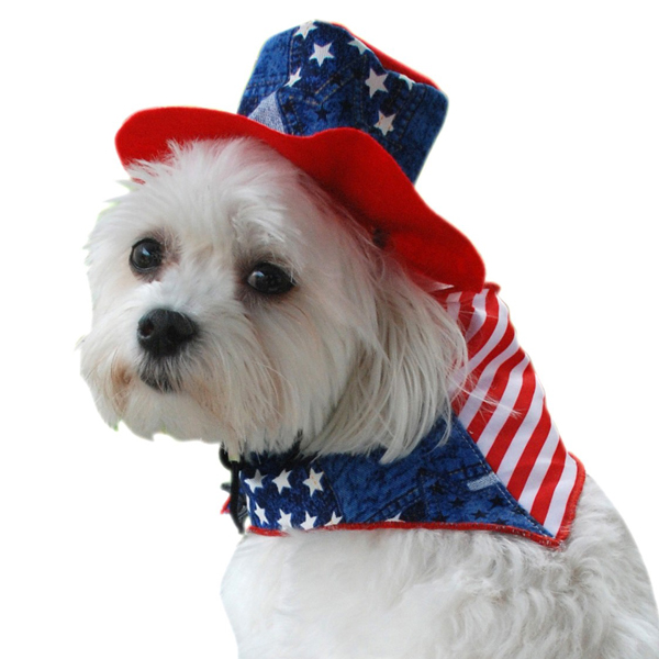 Patriotic Dog Bandana and Hat