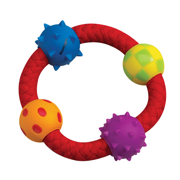 Petstages Multi-Texture Chew Ring Dog Toy