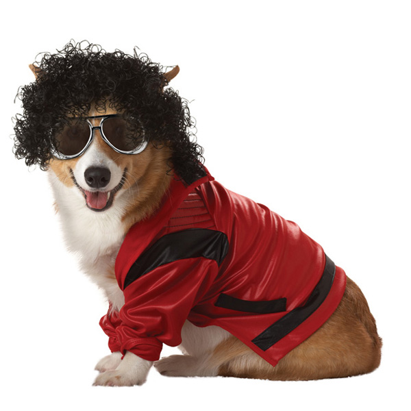 Pop King Dog Halloween Costume