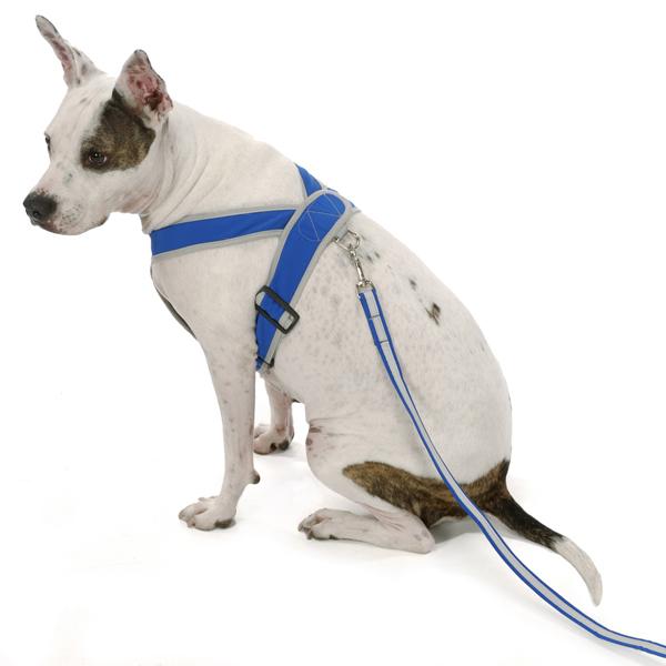 Precision-Fit Nylon Dog Harness - Sapphire