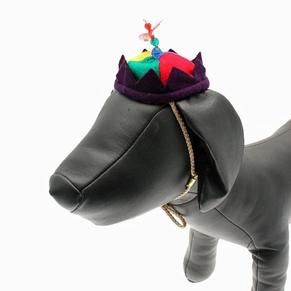 Propeller Beanie Dog Hat