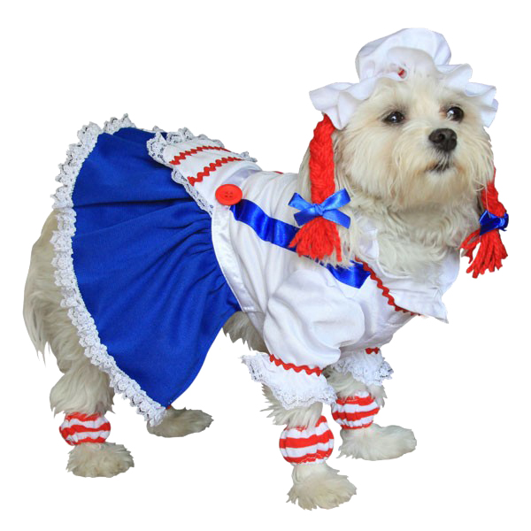 Rag Doll Halloween Dog Costume
