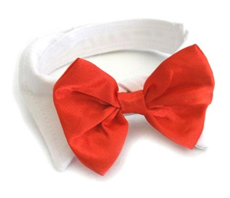 Red Satin Bowtie Collar