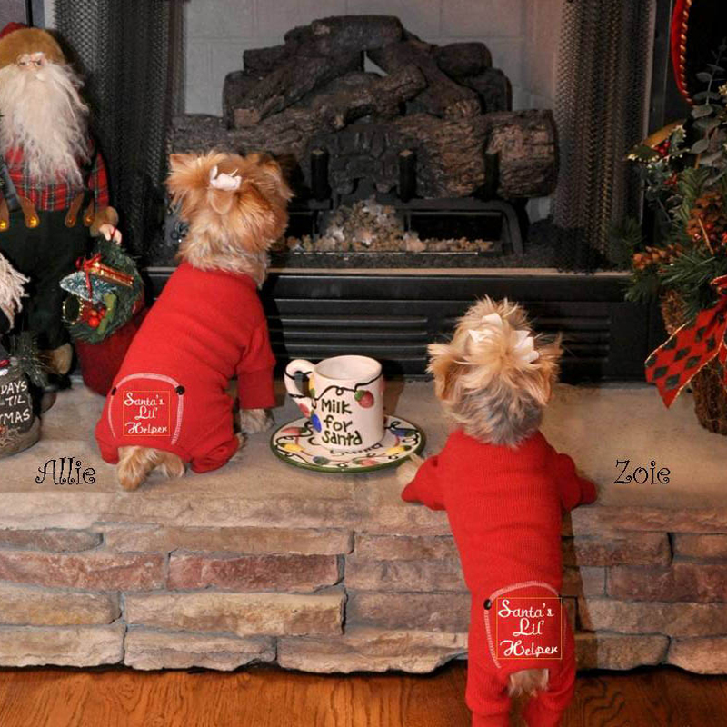 Santa's Lil Helper Dog Pajamas