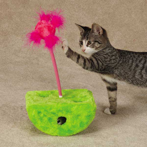 Savvy Tabby Rockin' Jabbers Cat Toy - Parrot Green