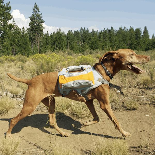 Singletrak Hydration Dog Pack by RuffWear - Orange Sunset