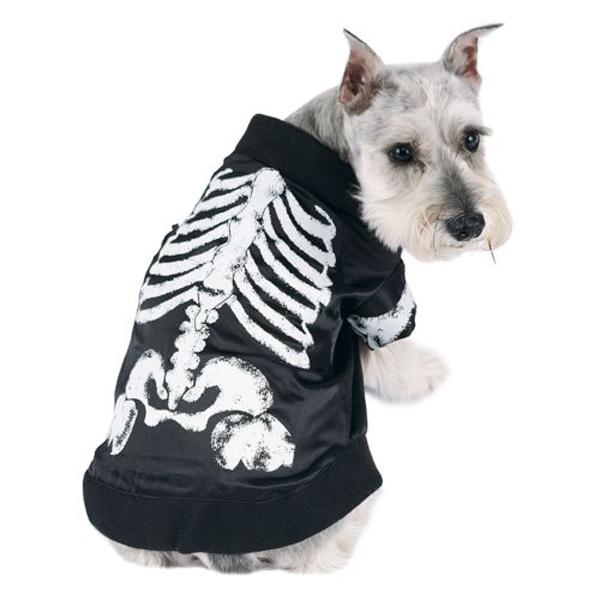 Skeledog Halloween Dog Costume