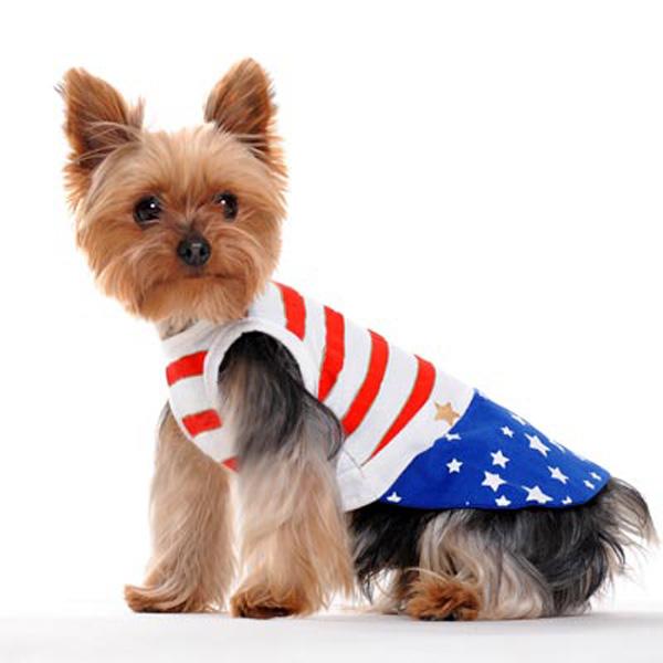 Star Spangled Dog Dress by Dogo