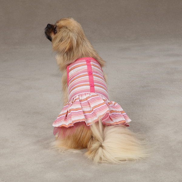 Striped Seersucker Dog Dress by Zack & Zoey - Pink