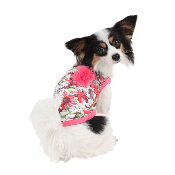 Sultry Dog Shirt by Puppia - Dark Pink