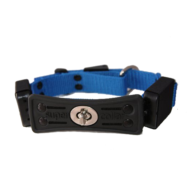 Supercollar Dog Collar with Built-In Leash - Blue