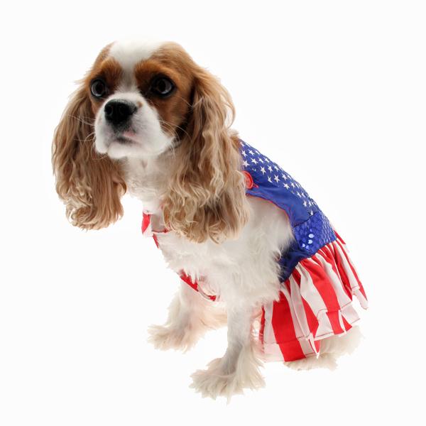 Superhero Dog Costume - Wonder Dog Dress