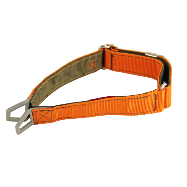 Tazlab Safe-T Stretch Adjustable Dog Collar - Blaze Orange