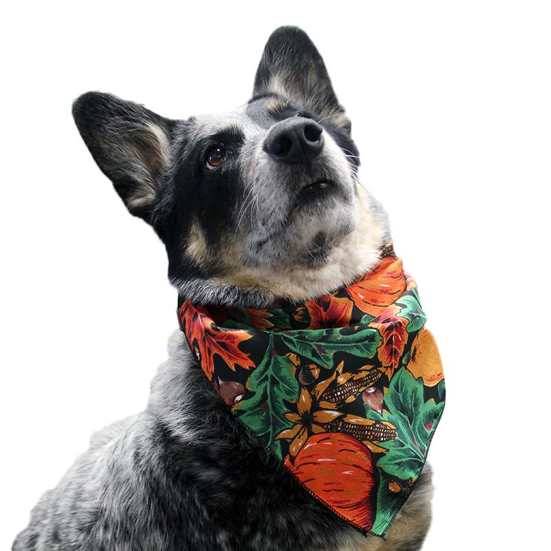 Top Performance Fall Dog Bandana