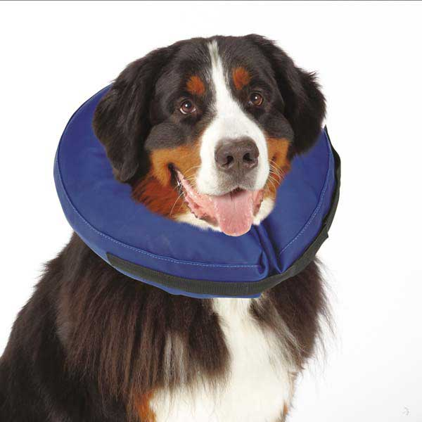 Total Pet Health Inflatable Pet Collar - Blue