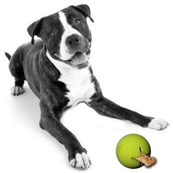 Tretbal Dog Toy - Green