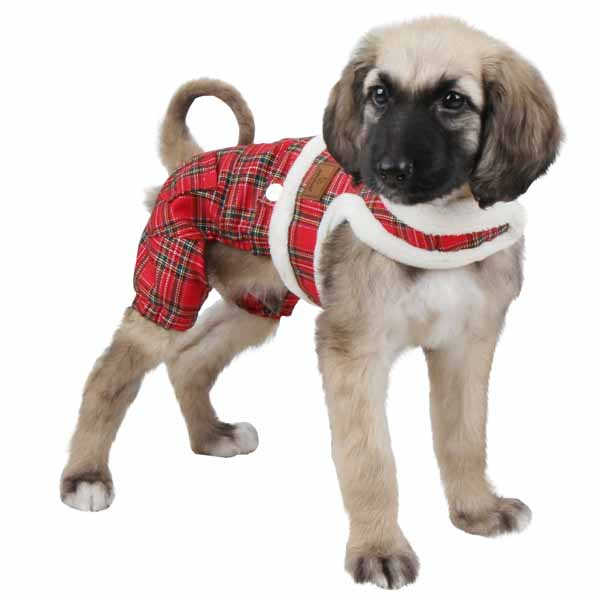 Trinity Dog Harness Jumpsuit by Pinkaholic - Red