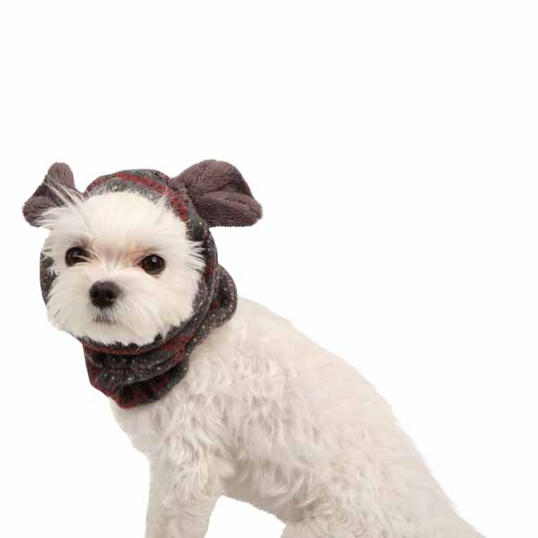 Twilight Dog Snood by Pinkaholic - Gray