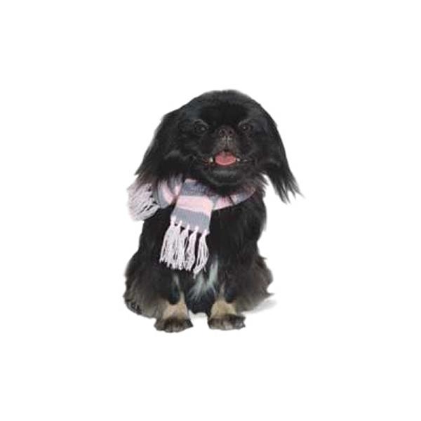 Urban Stripe Dog Scarf by Dogo - Pink