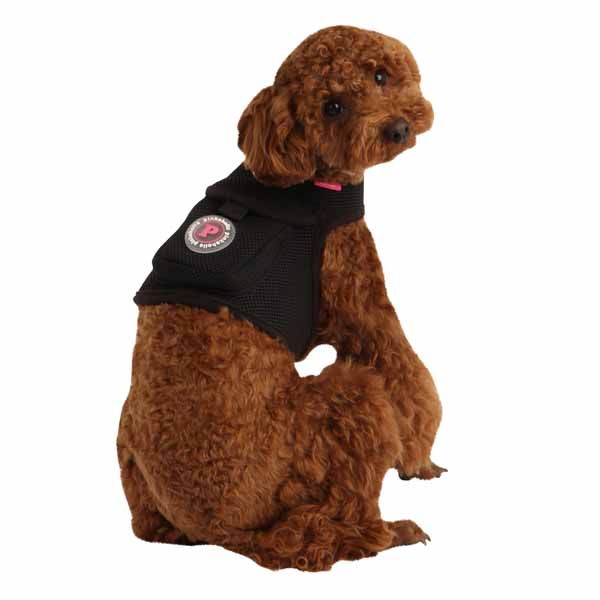 Vera Pinka Dog Harness by Pinkaholic - Black
