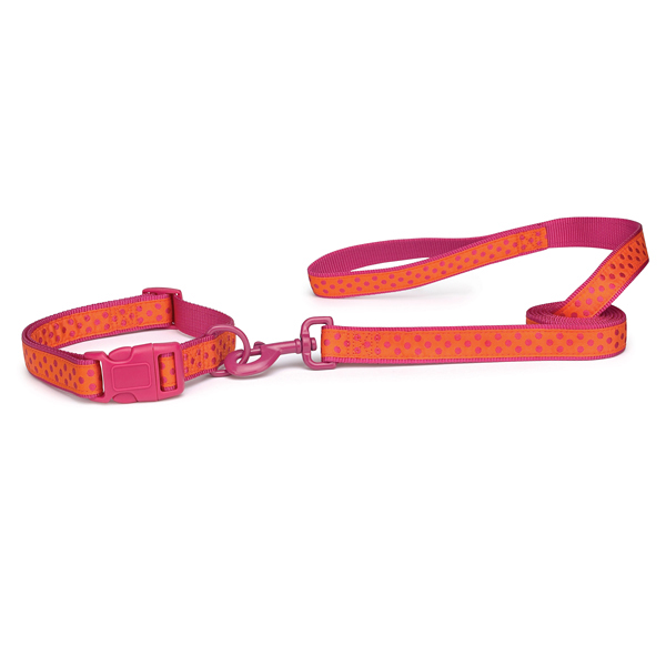 Zack & Zoey Brite Polka Dot Dog Collar - Raspberry