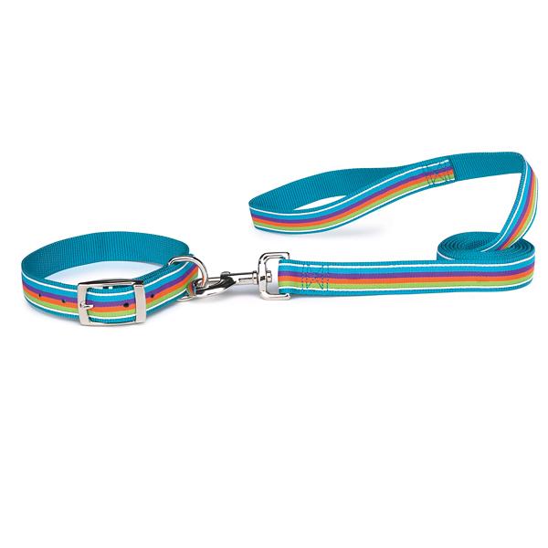 Zack & Zoey Brite Stripe Dog Leash - Bluebird