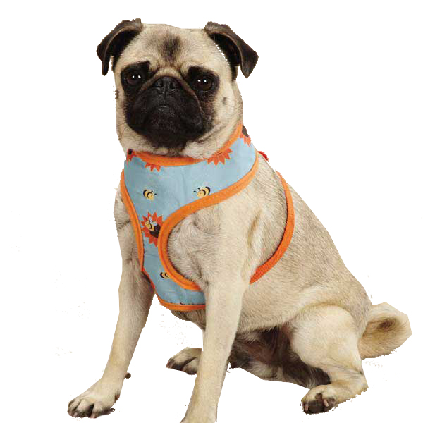 Zack & Zoey Flutter Bugs Dog Harness - Bumble Bee