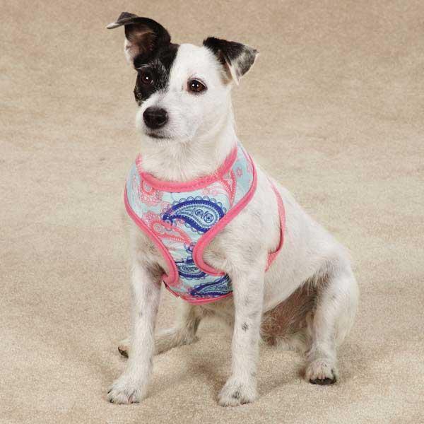 Fresh Water Paisley Dog Harness