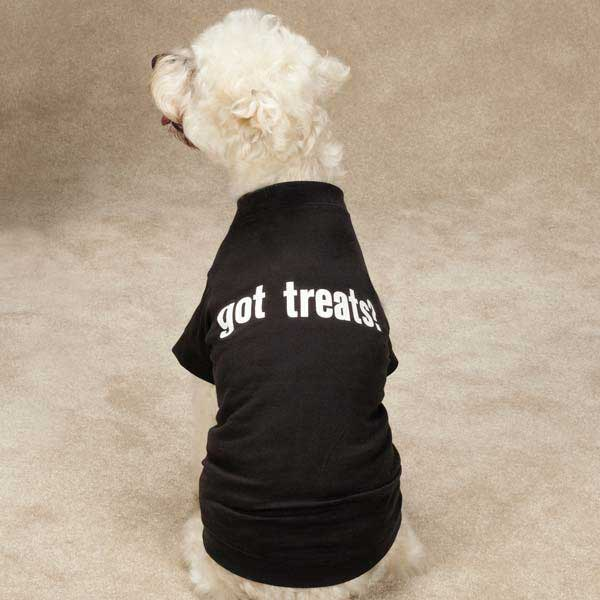 Zack & Zoey Got Treats T-Shirt - Black
