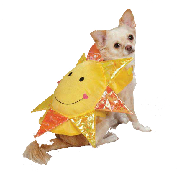 Zack & Zoey Happy Day Dog Costume