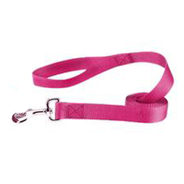 Zack and Zoey Nylon Dog Leash - Raspberry Sorbet