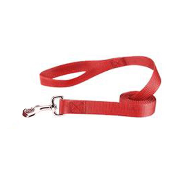 Zack and Zoey Nylon Dog Leash - Tomato Red