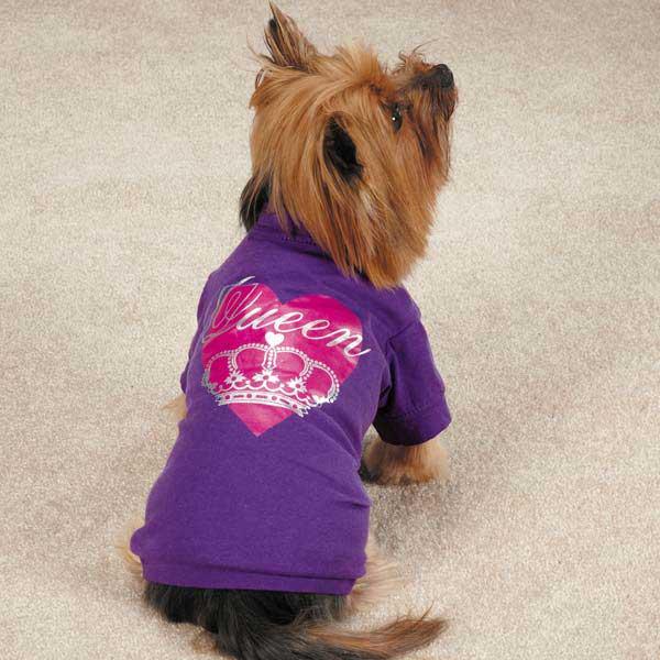Zack & Zoey Queen Pup Dog T-Shirt - Purple