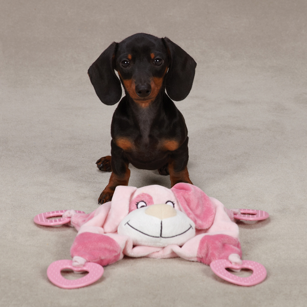 Zanies Puppy Snuggler Toy - Pink