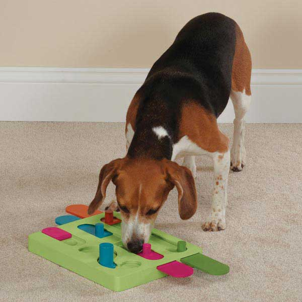 Zanies Slide N' Seek Interactive Dog Puzzle