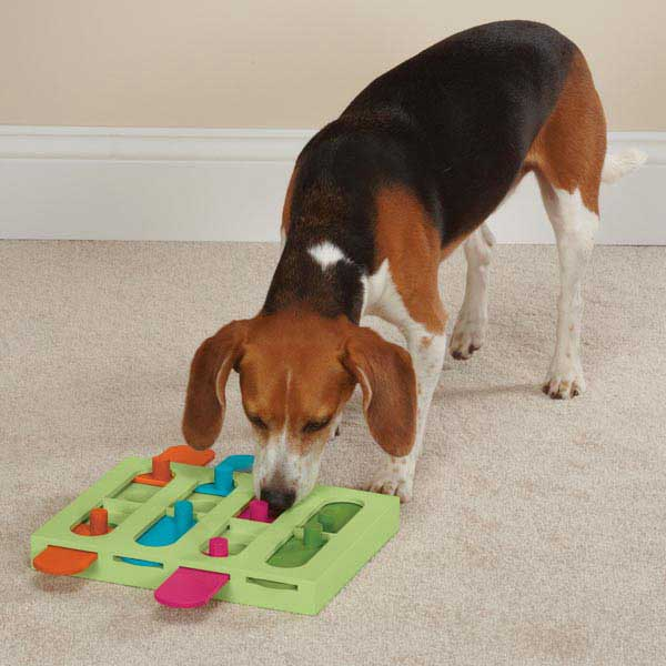 Zanies Treat Hunter Interactive Dog Puzzle