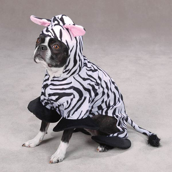 Zebra Dog Costume by Zack & Zoey