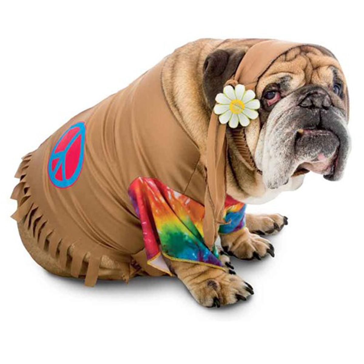 Zelda 60's Hippie Halloween Dog Costume