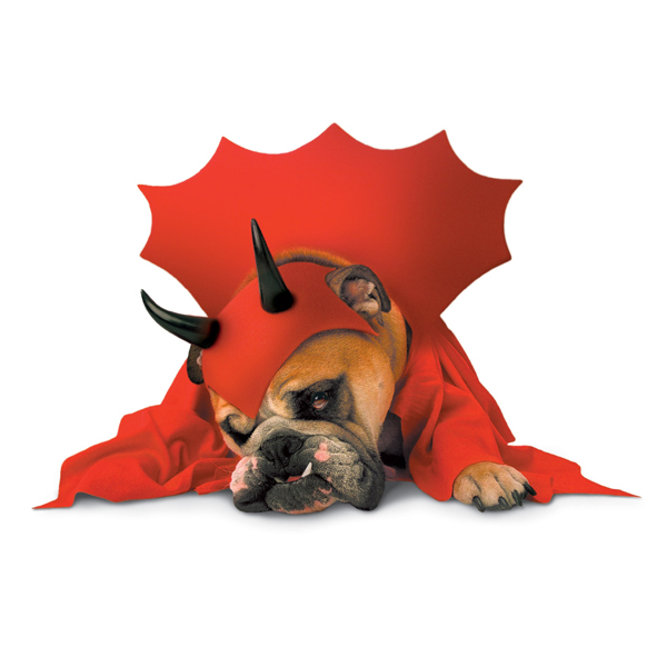 Zelda Devil Halloween Dog Costume