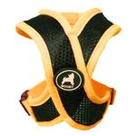 Active X Dog Harness by Gooby - Orange