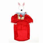 View Image 2 of Alice in Wonderland's White Rabbit Halloween Dog Costume