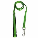 View Image 1 of American River Cushion Grip Dog Leash - Green