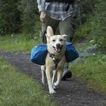 View Image 1 of Approach Dog Pack by RuffWear - Pacific Blue