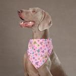 View Image 1 of Aria Butterfly Garden Dog Bandana