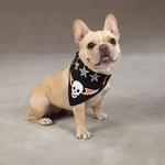 View Image 1 of Aria Ruff N' Tuff Dog Bandana