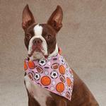 View Image 1 of Aria Sports Hound Dog Bandana - Pink