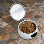 View Image 1 of Auto Pet Dish