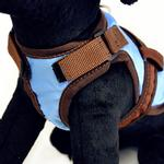 View Image 2 of Avant Garde Dog Harness - Sprout
