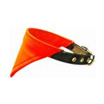 View Image 1 of Bandana Dog Collar - Hunting Orange